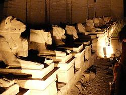 Templos de Karnak: Avenida las Esfinges